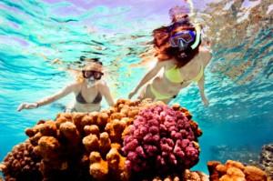 Хургада кораллы