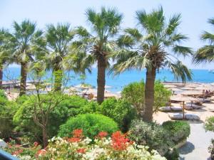 wpid-sea_shell_hotel_exsafir_hotel_4_7.jpg